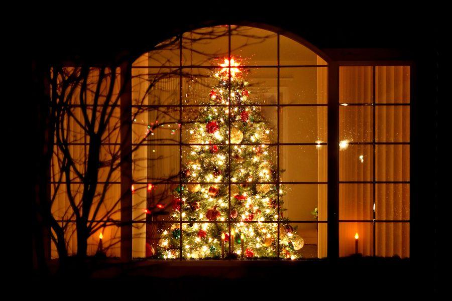 Kerstkaarten verzenden: Rijkelijk verlichte kerstboom achter het raam