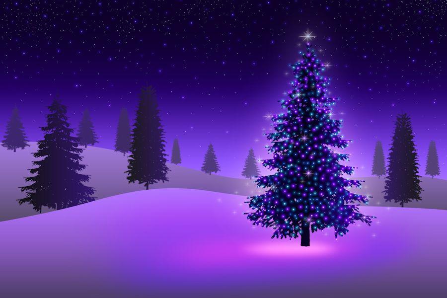 Kerstkaarten verzenden: Paars verlichte kerstboom met een ...